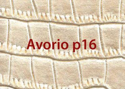colore-avorio-p16
