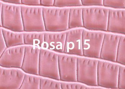 rosa-p15